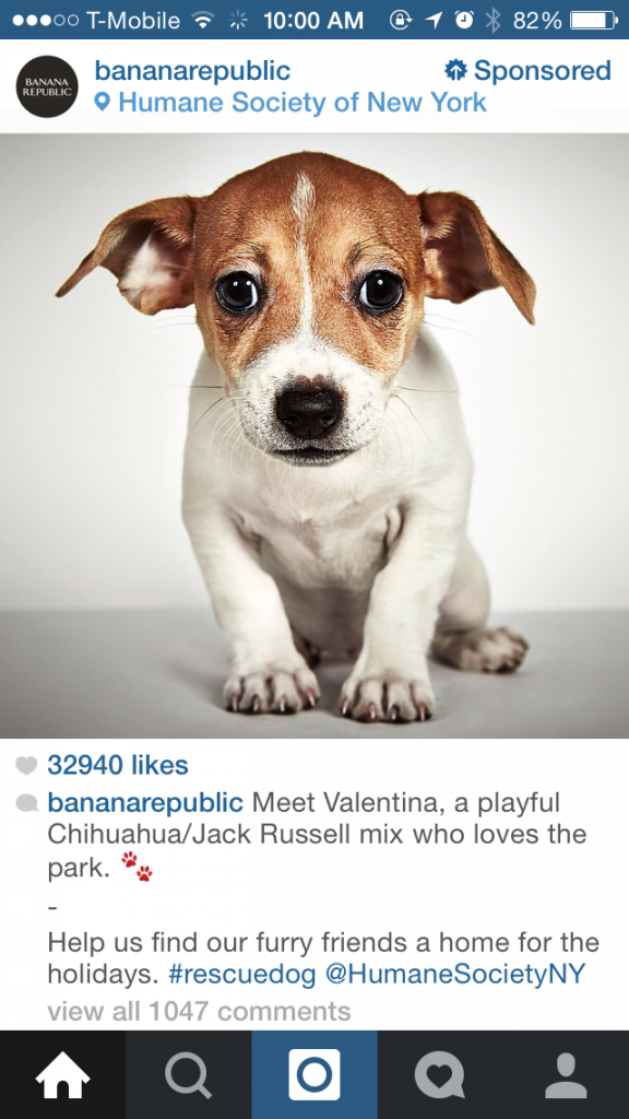 banana republic instagram ad featuring a puppy from the humane society